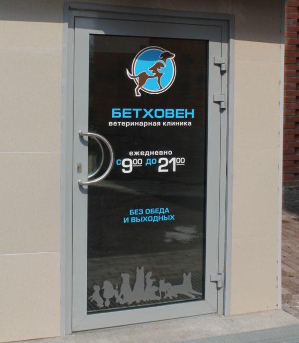 Алюминиевая одностворчатая дверь со стеклопакетом