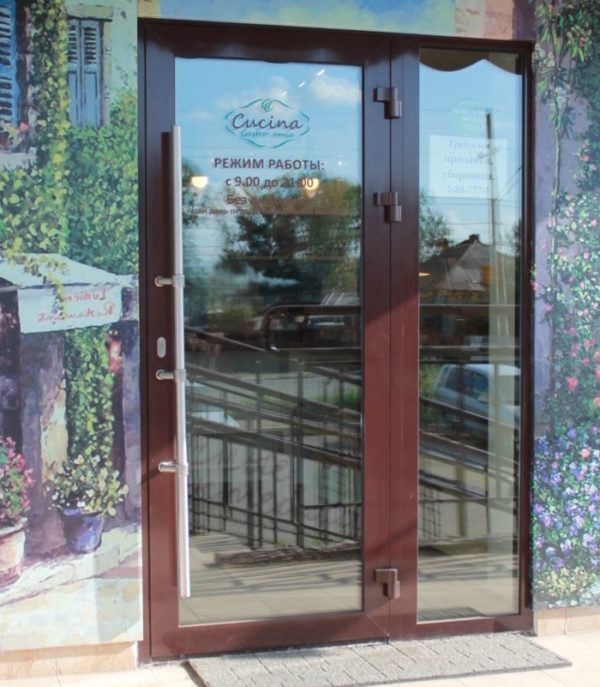 Алюминиевая одностворчатая дверь с приставным глухим окном